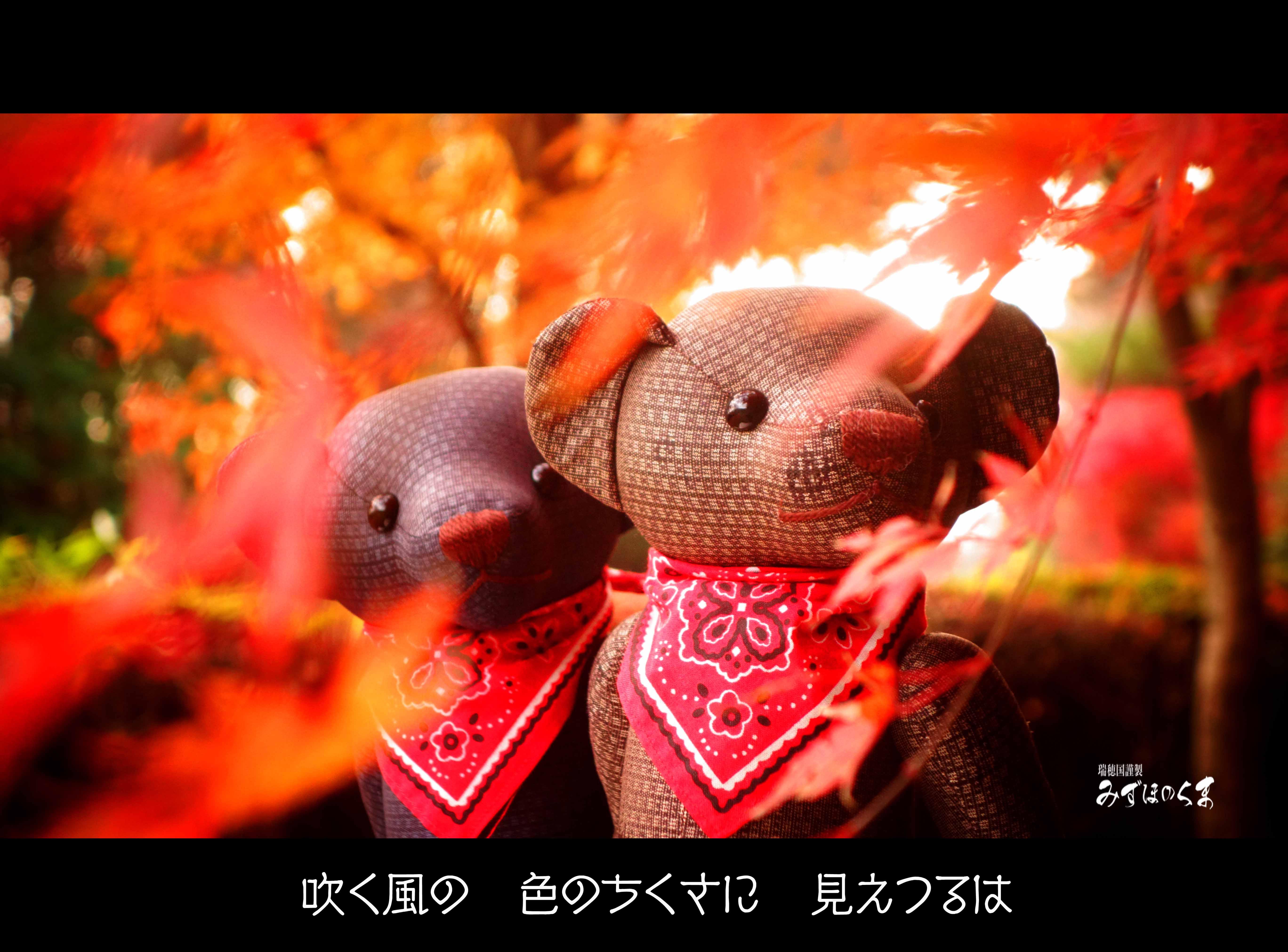 【秋風と和歌】古今和歌集に学ぶ秋の風の楽しみ方8選